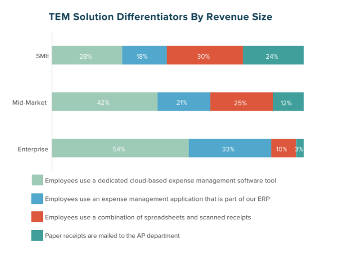 TEM Solution Differentiators by Revenue Size