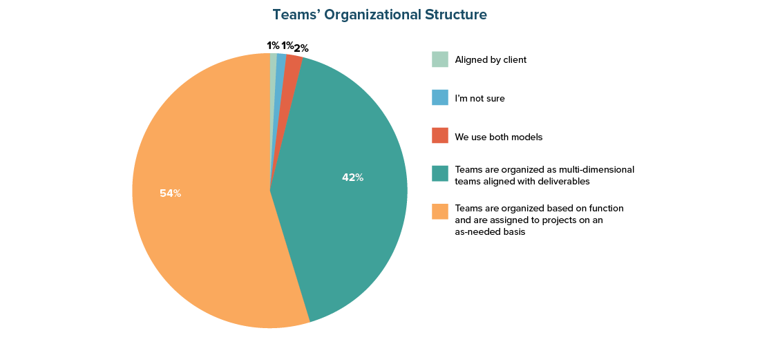 Team's Organizational Structure
