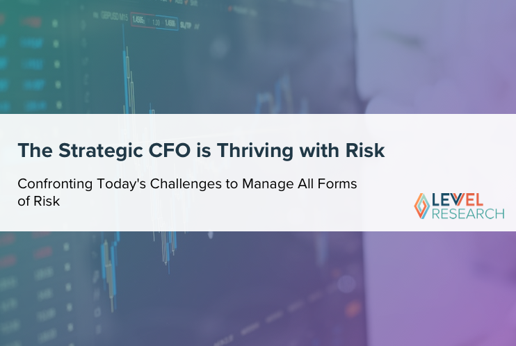 The Strategic CFO is Thriving with Risk