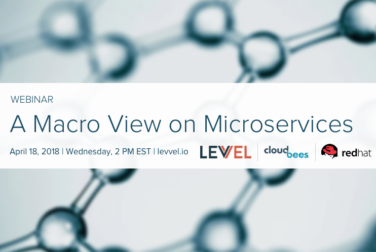 A Macro View on Microservices